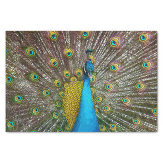 Regal Peacock Bird with Teal and Gold Plumage Tissue Paper
