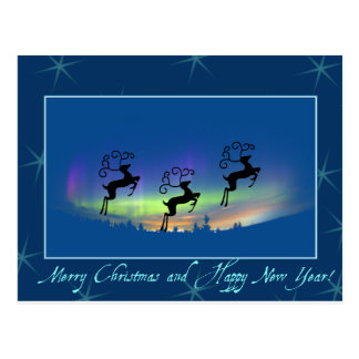 Reindeer/Northern lights Postcard