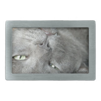 Relax! Grey Purring Cat Belt Buckle