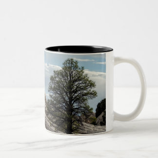 Relax with nature Two-Tone coffee mug