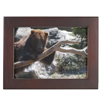 Relaxing Brown Bear Keepsake Box