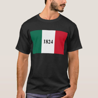 Remember the Alamo Texas State Flag T-Shirt