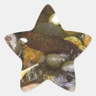 Restful Pond Star Stickers