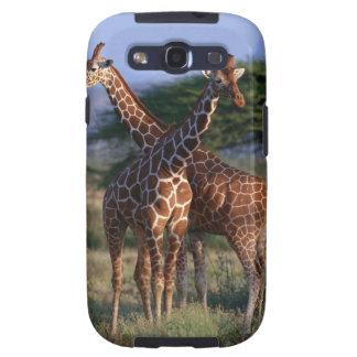Reticulated Giraffe 2 Galaxy SIII Case