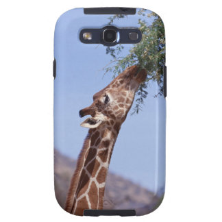 Reticulated Giraffe Galaxy S3 Covers