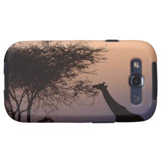Reticulated Giraffe Galaxy SIII Cover