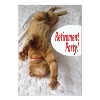Retirement Party Invitation with funny cat