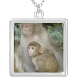 Rhesus Macaques Macaca mulatta) mother & baby Silver Plated Necklace