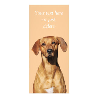 Rhodesian Ridgeback dog photo custom rack card