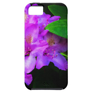 Rhododendron in Bloom iPhone 5 Cover