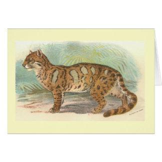 Richard Lydekker - Clouded Leopard Greeting Cards