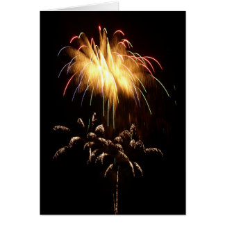 Richland Center Wisconsin Fireworks 2008 (C5) Card