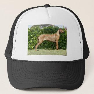 Ridgeback Stck Trucker Hat