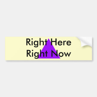 Right Here Right Now The MUSEUM Zazzle Gifts Bumper Stickers