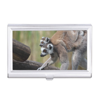 Ring-Tailed Lemur Mother And Baby Business Card Holders