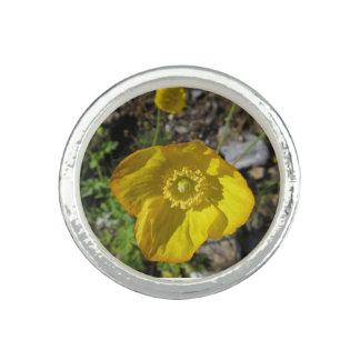 Ring yellow flower