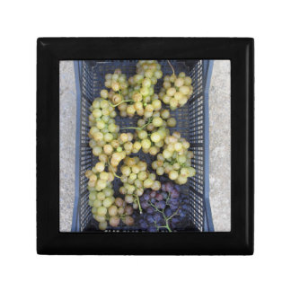 Ripe grapes in box