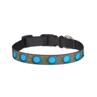 Rivets Metallic Dog Collar