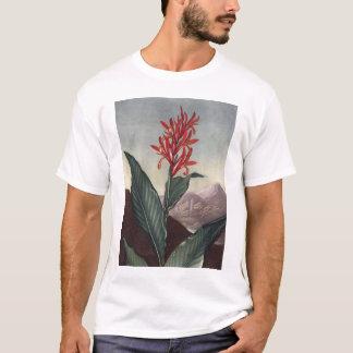 RJ Thornton - Indian Reed T-Shirt
