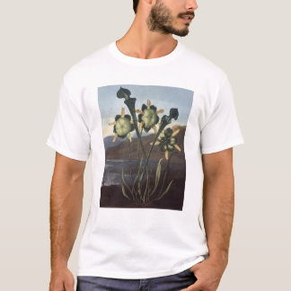 RJ Thornton - Sarracenia Pitcher Plant T-Shirt