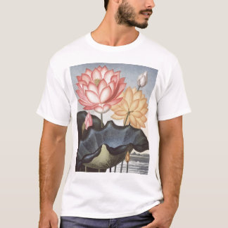 RJ Thornton - The Sacred Egyptian Bean - Lotus T-Shirt