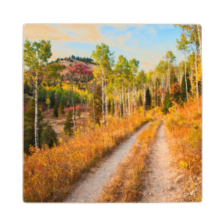 Road Through Autumn Colors Wood Coaster