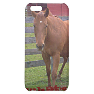 Roan Horse What s Up 4G case Cover For iPhone 5C
