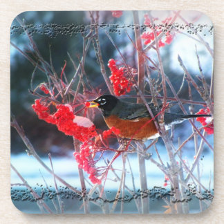 Robin in the Tree; Merry Christmas Coaster