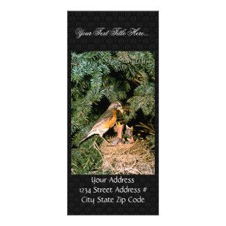 Robin with Chicks Rack Card Design