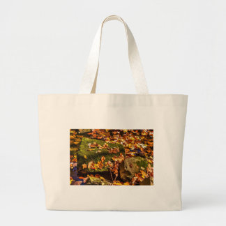 Rock in a Stream Large Tote Bag