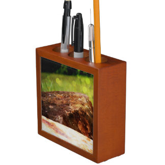 ROCK(star) desk organizer Pencil/Pen Holder