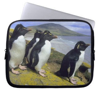 Rockhopper Penguins, (Eudyptes chrysocome), Laptop Sleeve