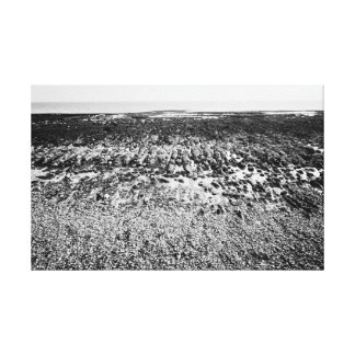 Rockpools - Brighton Stretched Canvas Print