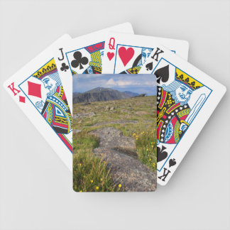 Rocky Mountain National Park Bicycle Playing Cards
