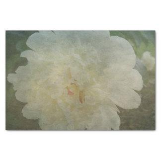 Romantic Peony Festiva Tissue Paper