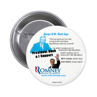 Romney Newt Prudent pin