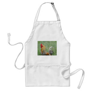 Roosters Aprons