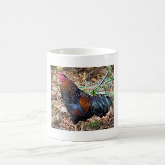 Roosters Rule Mug