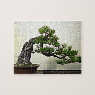 Root Over Rock Pine Bonsai Tree Jigsaw Puzzle