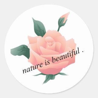 Rose (Peach) - Beautiful nature Classic Round Sticker