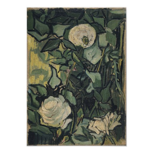 Roses by Vincent Van Gogh Art Photo