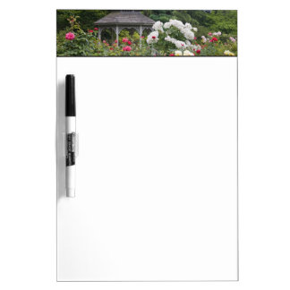 Roses in bloom and Gazebo Rose Garden at the Dry Erase Board