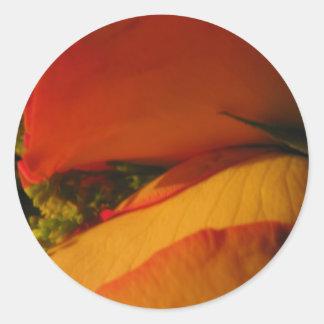 """Roses in Golden Orange and Yellow"" Round Sticker"