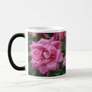 Roses of Friendship and Love Mug