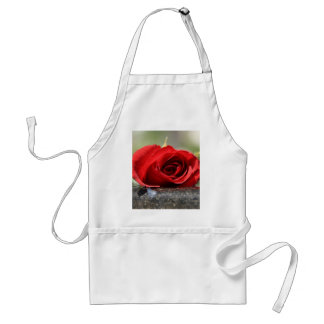 Rosy Offering Standard Apron