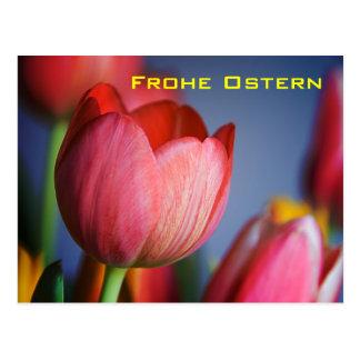 Rote Tulpen • Oster-Postkarte Postcard