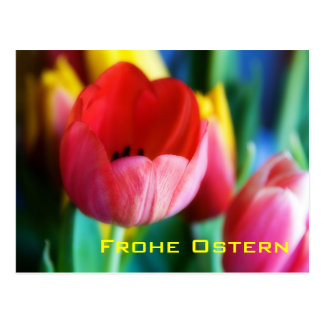 Rote Tulpen • Oster-Postkarte Post Cards