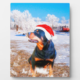Rottweiler Dog Christmas Painting Plaque