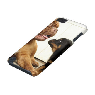 Rottweiler-puppy-dog-yearning iPod Touch (5th Generation) Case