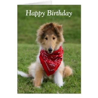 Rough collie puppy dog cute photo birthday card greeting card